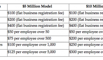 mv-biz-tax-options
